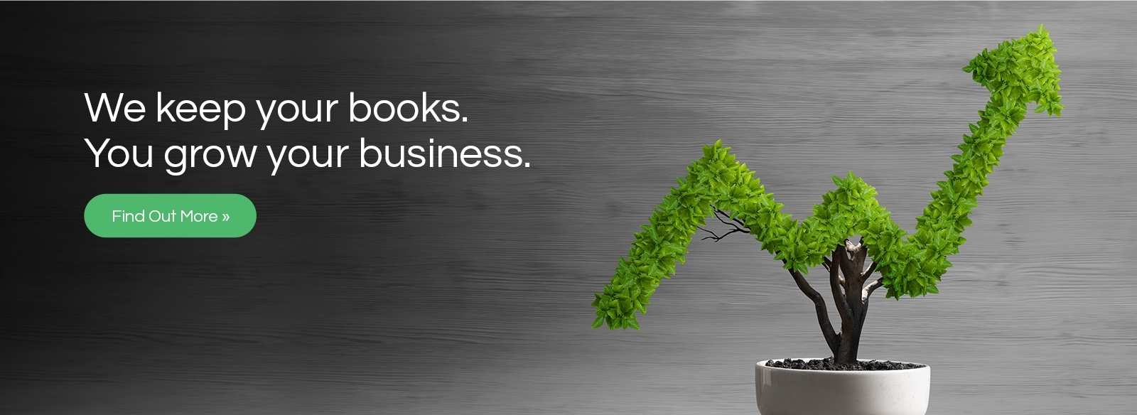We Keep Your Books. You Grow Your Business